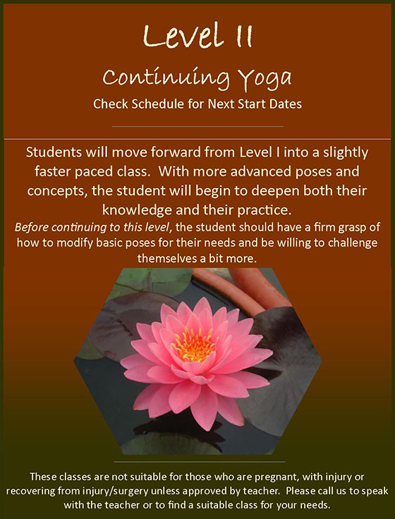 Level II Continuing Yoga